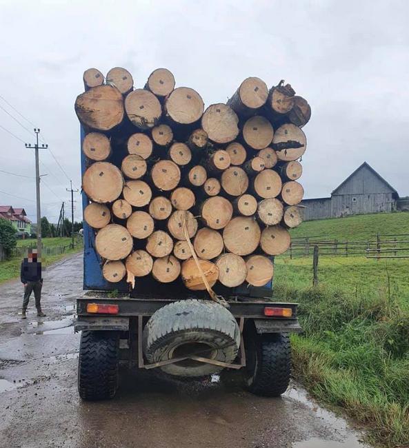 На Закарпатті правоохоронці зупинили вантажівку з сумнівною деревиною (ФОТО), фото-2