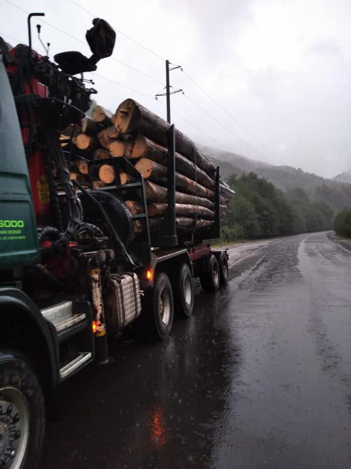 4 випадки за один день: на Закарпатті поліція активно бореться з чорними лісорубами (ФОТО), фото-2