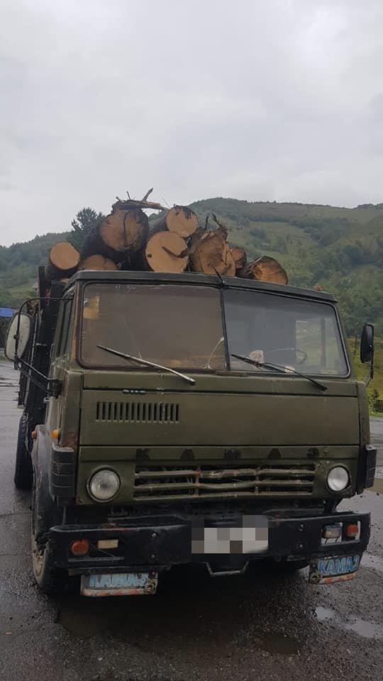 4 випадки за один день: на Закарпатті поліція активно бореться з чорними лісорубами (ФОТО), фото-5