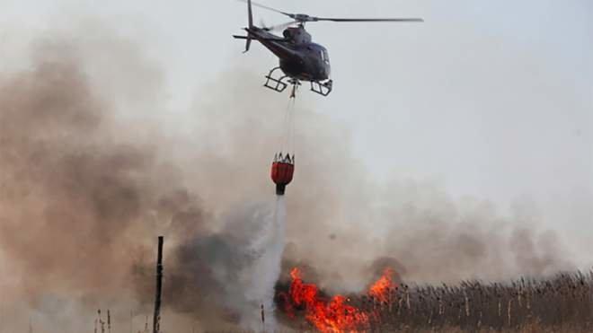 Масштабні пожежі на Луганщині: вогонь дістався вже до замінованого узбіччя біля КПВВ (ФОТО), фото-2