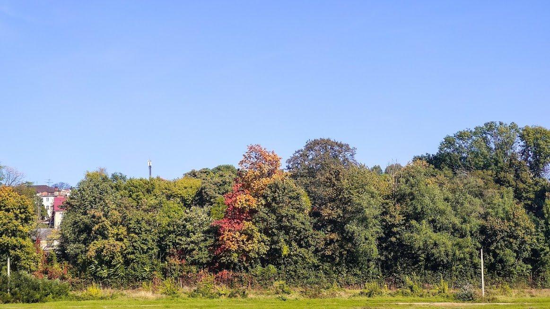 Золота осінь в Ужгороді: не проґавте красу! (ФОТОРЕПОРТАЖ), фото-5