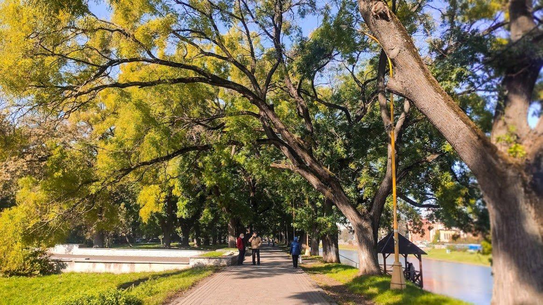 Золота осінь в Ужгороді: не проґавте красу! (ФОТОРЕПОРТАЖ), фото-6
