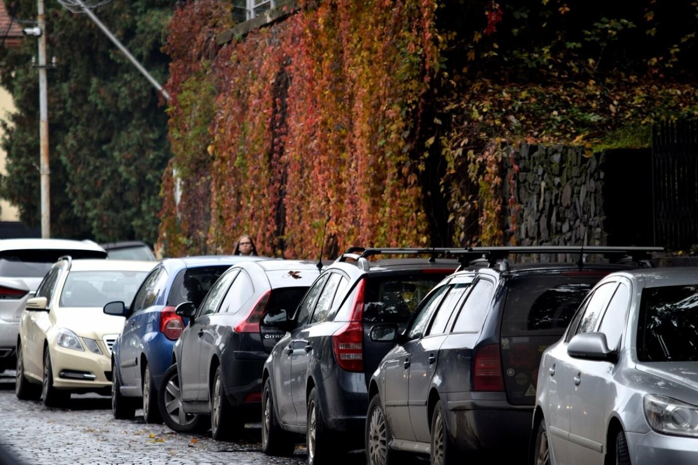 Багряне місто: в мережі показали фото осіннього Ужгорода (ФОТО), фото-6