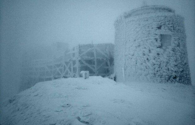 Білі мухи налетіли: у Карпатах випав сніг (ФОТО), фото-2