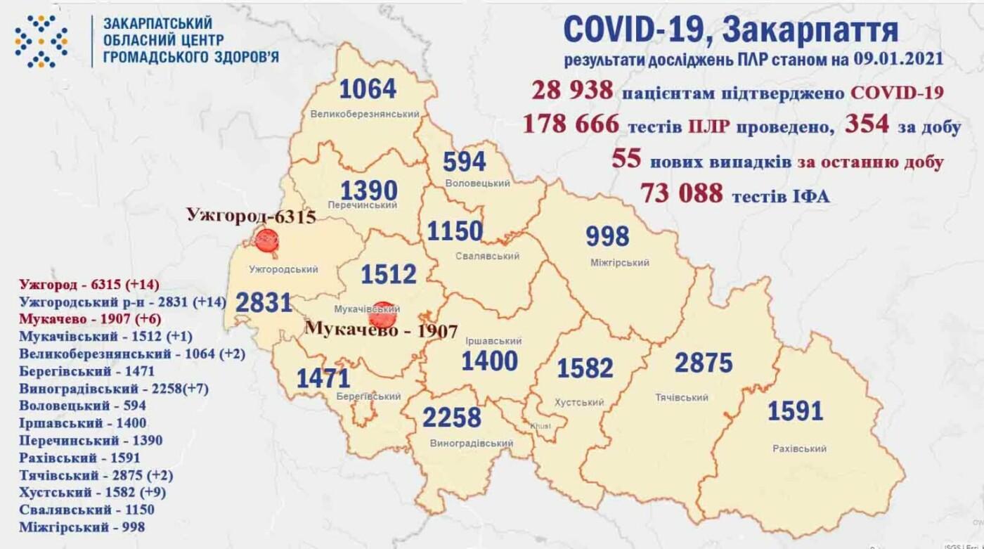 Тенденція на зменшення? На Закарпатті за попередню добу діагностували 55 нових випадків COVID-19, фото-1