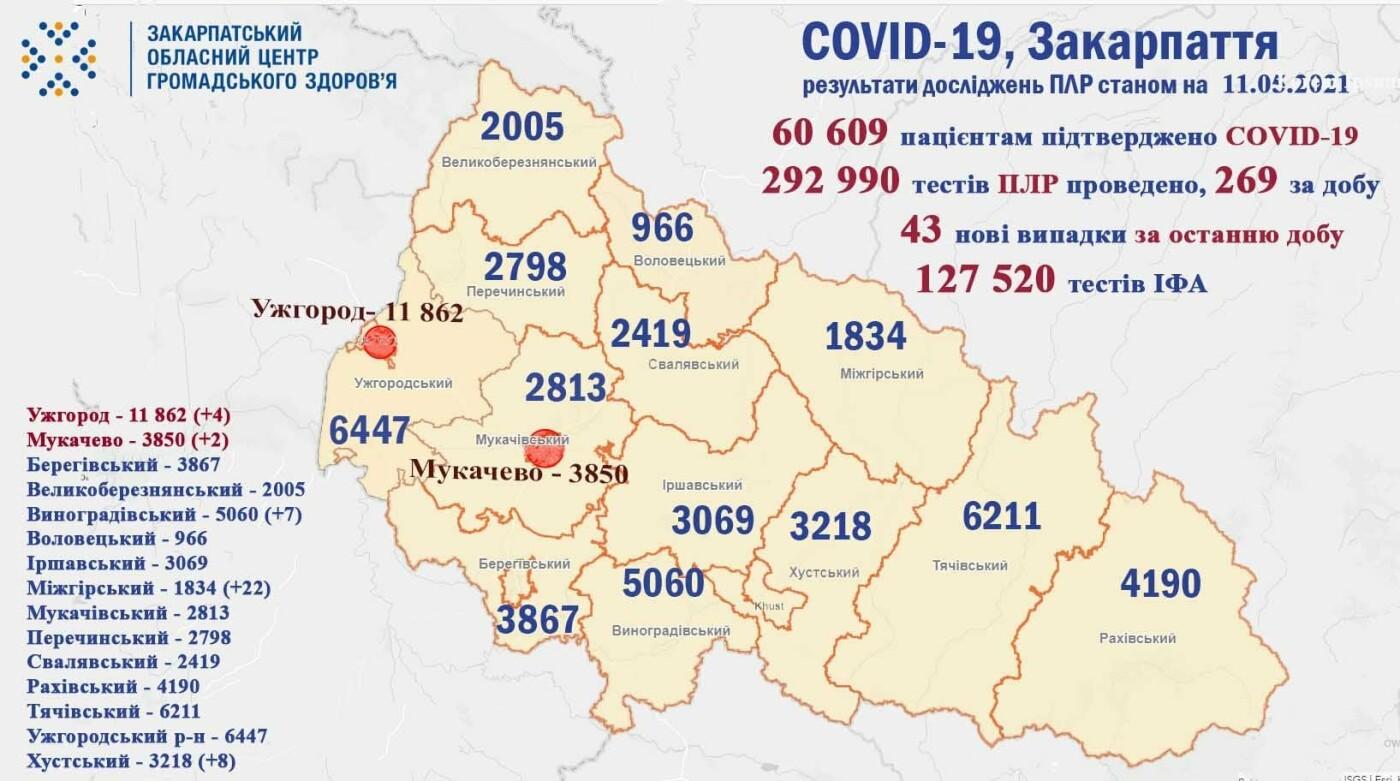43 закарпатцям минулої доби діагностували COVID-19, фото-1