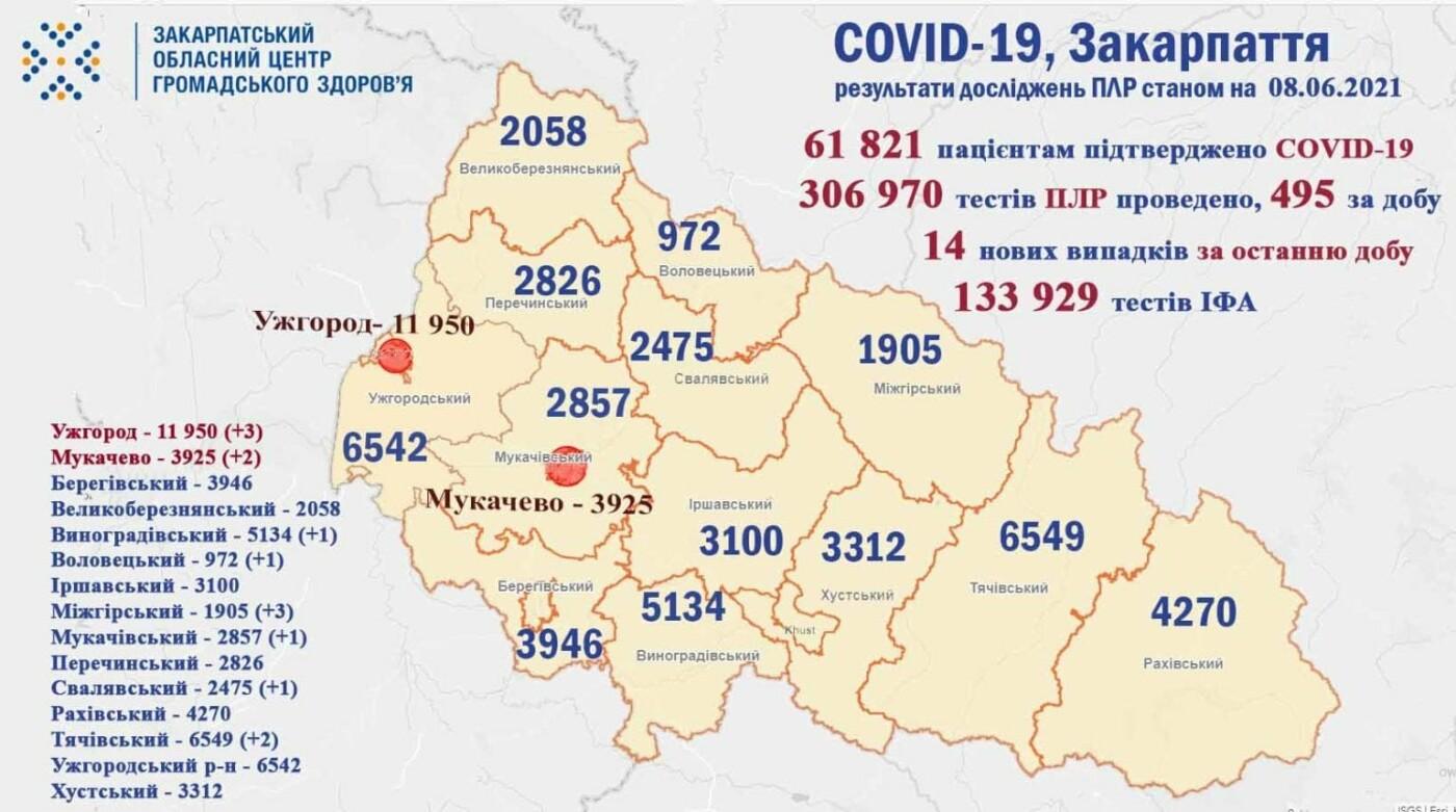 Статистика ковід на Закарпатті: всього 14 випадків захворюваності, фото-1