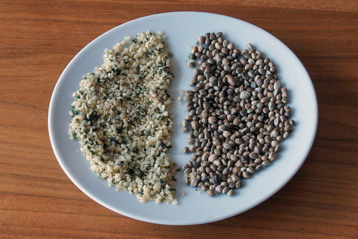 У потребление семена конопли конопля от мастопатии